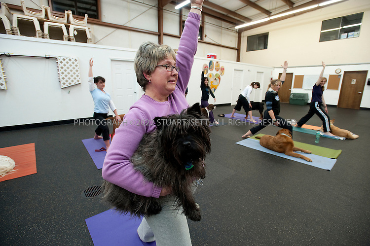 3/6/2009--Bellevue, WA, USA..Peggy Marinovich (purple top) and her dog Bogey at Brenda Bryan's dog yoga, or 'doga' class, held at the Seattle Humane Society auditorium just outside Seattle...©2009 Stuart Isett. All rights reserved.