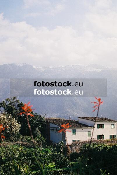 view over the valley of S&oacute;ller towards the snow covered Sierra de Alfabia in the Tramontana mountains<br /> <br /> vista sobre el valle de S&oacute;ller hacia la nevada Sierra de Alfabia de la Sierra de Tramontana (cat.: Serra de Tramuntana)<br /> <br /> Blick &uuml;ber das Tal von S&oacute;ller auf die schneebedeckte Sierra de Alfabia im Tramontana-Gebirge<br /> <br /> 1840 x 1232 px<br /> 150 dpi: 31,16 x 20,86 cm<br /> 300 dpi: 15,58 x 10,43 cm<br /> Original: 35 mm