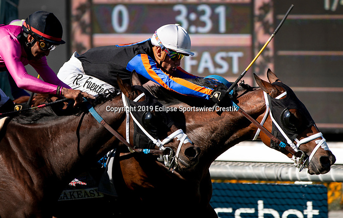 ARCADIA, CA: October 06: #11 El Tigre Terrble (inside) squeezes through to win the Speakeasy Stakes at Santa Anita Park on October 06, 2019 in Arcadia, California (Photo by Chris Crestik/Eclipse Sportswire)