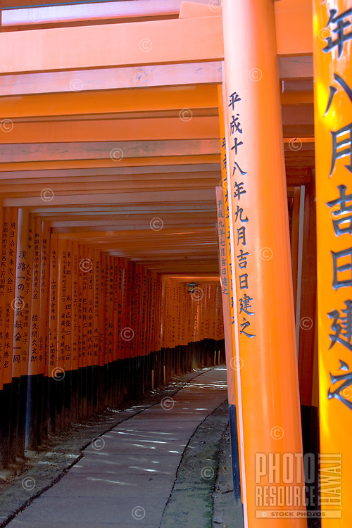 The famous Tori Gates of Kyoto, Japan invite the explorer to enter and contemplate their expansiveness.