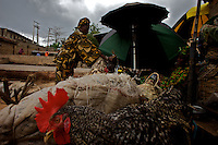 A traditional Yoruba religion practitioner ( on left ) buys a few chickens to be sacrificed to the gods during routine worships  In Osun's state capital Oshogbo, Nigeria on tuesday March 31 2009..Oshogbo is known for it's art school and the work of Austrian woman Susan Wenger. Most of its population are part of the Yoruba ethnic group.
