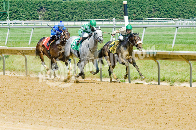 Downhill Dale winning at Delaware Park on 6/28/12