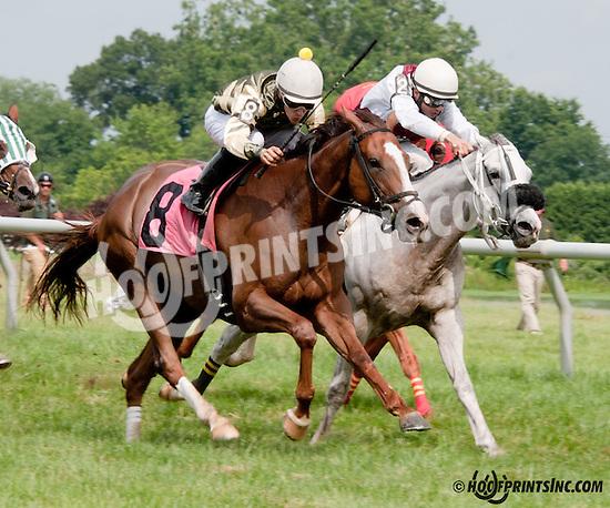 Ladida winning at Delaware Park on 7/11/13
