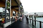 Auckland, New Zealand 2013