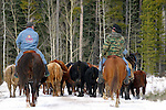 Cattle farming and ranching<br />