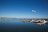 MASSACHUSETTS, Provincetown, Harbor views on departure