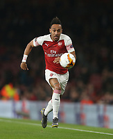 Arsenal's Pierre-Emerick Aubameyang<br /> <br /> Photographer Rob Newell/CameraSport<br /> <br /> UEFA Europa League Round of 32 Second Leg - Arsenal v BATE Borisov - Thursday 21st February 2019 - The Emirates - London<br />  <br /> World Copyright © 2018 CameraSport. All rights reserved. 43 Linden Ave. Countesthorpe. Leicester. England. LE8 5PG - Tel: +44 (0) 116 277 4147 - admin@camerasport.com - www.camerasport.com