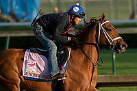 LOUISVILLE, KY - MAY 1: Monomoy Girl, trained by Brad Cox, exercises in preparation for the Kentucky Oaks at Churchill Downs on May 1, 2018 in Louisville, Kentucky. (Photo by Eric Patterson/Eclipse Sportswire/Getty Images)