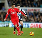 Roberto Firmino of Liverpool - English Premier League - Newcastle Utd vs Liverpool - St James' Park Stadium - Newcastle Upon Tyne - England - 6th December 2015 - Picture Simon Bellis/Sportimage