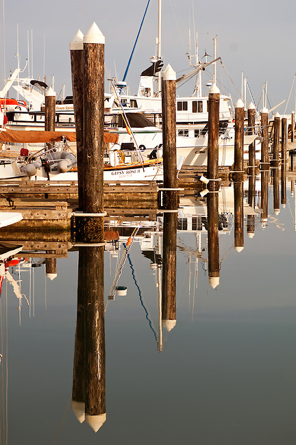 Reflection of pilings on water