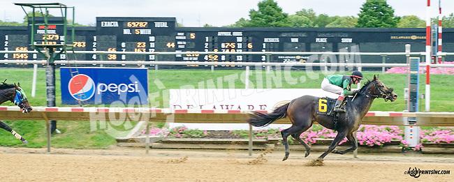 Chocolate Wildcat winning at Delaware Park on 9/30/15
