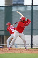 Philadelphia Phillies catcher Colby Fitch (22) at bat during an Instructional League game against the Toronto Blue Jays on September 30, 2017 at the Carpenter Complex in Clearwater, Florida.  (Mike Janes/Four Seam Images)