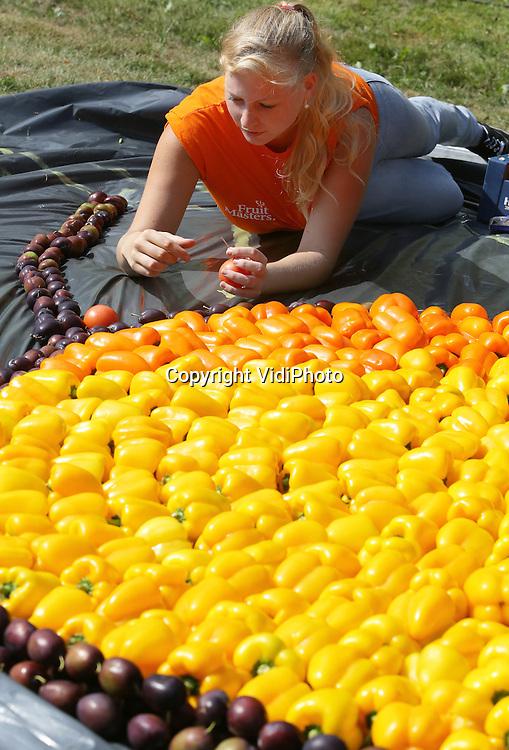 Foto: VidiPhoto<br /> <br /> TIEL - Langs de grachten in Tiel is woensdag begonnen met het leggen van 22 fruitmoza&iuml;ken. De leggers bestaan uit tientallen vrijwilligers uit Tiel en omgeving. De kunstwerken van fruit, die vrijdag klaar moeten zijn, vormen een prelude op het 53 fruitcorso dat op zaterdag 14 september wordt gehouden en waaraan twintig fruitwagens deelnemen. De moza&iuml;eken bestaan uit tientallen soorten groenten en fruit en worden zaterdag door een jury beoordeeld.
