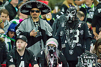 The Oakland Raiders Raider Nation