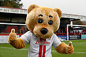 Boro Bear<br />  - Stevenage v Rotherham United - Sky Bet League 1 - Lamex Stadium, Stevenage - 16th November, 2013<br />  © Kevin Coleman 2013