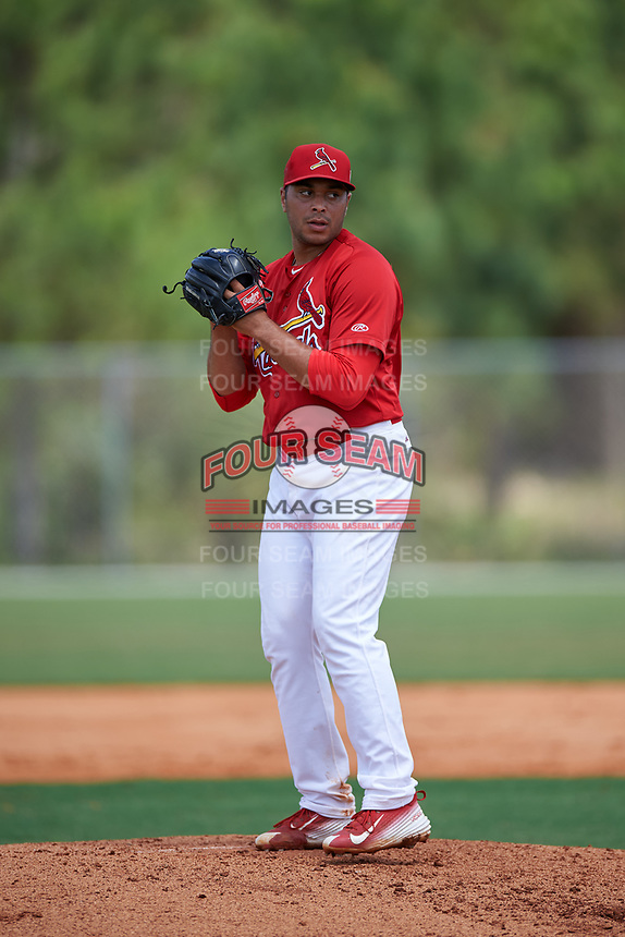 St. Louis Cardinals pitcher Max Almonte (41) during a Minor League Spring Training intrasquad game on March 31, 2016 at Roger Dean Sports Complex in Jupiter, Florida.  (Mike Janes/Four Seam Images)
