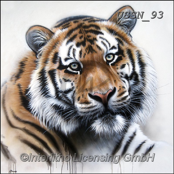 Sandi, REALISTIC ANIMALS, REALISTISCHE TIERE, ANIMALES REALISTICOS, paintings+++++tigerportrait2,USSN93,#a#, EVERYDAY ,tiger,tigers, ,puzzles