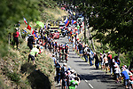 The 31 man breakaway group in action during Stage 14 of the 2018 Tour de France running 188km from Saint-Paul-Trois-Chateaux to Mende, France. 21st July 2018. <br /> Picture: ASO/Pauline Ballet | Cyclefile<br /> All photos usage must carry mandatory copyright credit (&copy; Cyclefile | ASO/Pauline Ballet)
