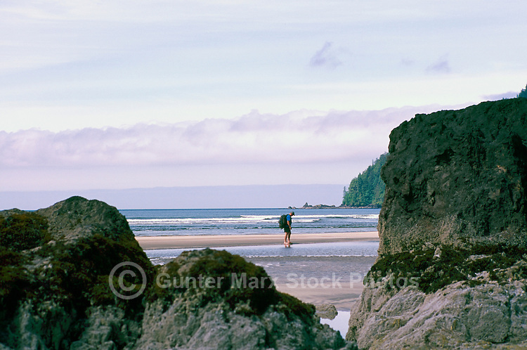 Cape Scott Provincial Park, Northern Vancouver Island, BC, British Columbia, Canada - Hiker hiking on Rugged Beach at San Josef Bay