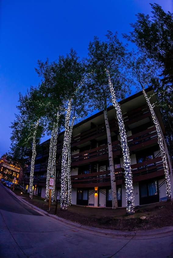 Illuminated aspen trees, Wildwood Lodge, Snowmass Village (Aspen), Colorado USA.