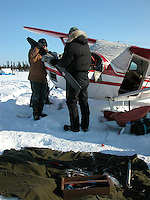 Jon Little.Pilots work to replace a chipped propeller and broken landing gear from an Iditarod Air Force plane that was damaged on landing at Cripple. March 9, 2006
