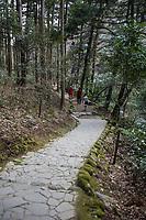 Yamanaka Town