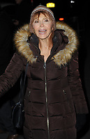 www.acepixs.com<br /> November 14, 2017  New York City<br /> <br /> Tina Louise attending the 'Wonder Wheel' film premiere on November 14, 2017 in New York City.<br /> <br /> Credit: Kristin Callahan/ACE Pictures<br /> <br /> <br /> Tel: 646 769 0430<br /> Email: info@acepixs.com