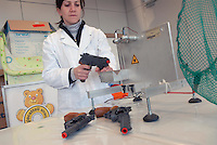- Italian Institute for Toy Safety; certification of toys and products intended for children: safety tests for weapons....- Istituto Italiano Sicurezza dei Giocattoli; certificazione dei giocattoli e dei prodotti destinati all'infanzia: test di sicurezza per le armi