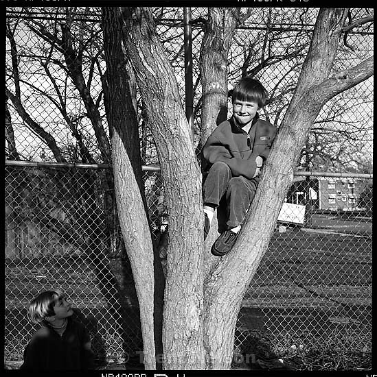 trent shadow. Noah Nelson in tree. nathaniel nelson<br />