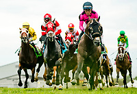 FRANKLIN, KY - SEPTEMBER 08: Multiplier #5, ridden by Joel Rosario, leads the field past the stands in the Calumet Farm Kentucky Turf Cup on Kentucky Turf Cup Day at Kentucky Downs on September 8, 2018 in Franklin, Kentucky. (Photo by Scott Serio/Eclipse Sportswire/Getty Images)