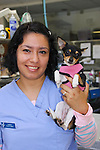 Bay Animal Hospital | Corporate Head shots with Pets | Office Shots and Pet Surgery | Manhattan Beach California | Beach Portraits | Pet Portraits | Corporate Headshots | Employee Corporate Headshots | Website Facebook Portraits | 2009 | <br />