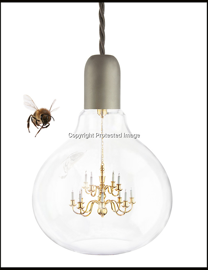 BNPS.co.uk (01202 558833)<br /> Pic: BNPS<br /> <br /> A British company is hoping to become a shining light in the design world - after launching the world's smallest chandelier.<br /> <br /> The minuscule brass candelabra is just three inches wide and two inches tall with tiddly quarter-inch candles - and the whole thing fits inside a lightbulb.<br /> <br /> But despite its dinky size, the luxury decor comes with a whopping price tag - the King Edison pendant lamp will set buyers back an eye-watering £480.