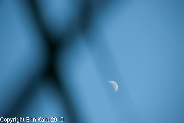 This series of crescent moon photos is completely untouched and unedited. The photographs are exactly what I shot in that moment (manually and with natural light only). The moon is not superimposed. I didn't learn Photoshop for a reason, and that is because I'm a purist.  Photography for me is about capturing a moment as it actually is, not about exaggerating or altering or creating something different after the fact.