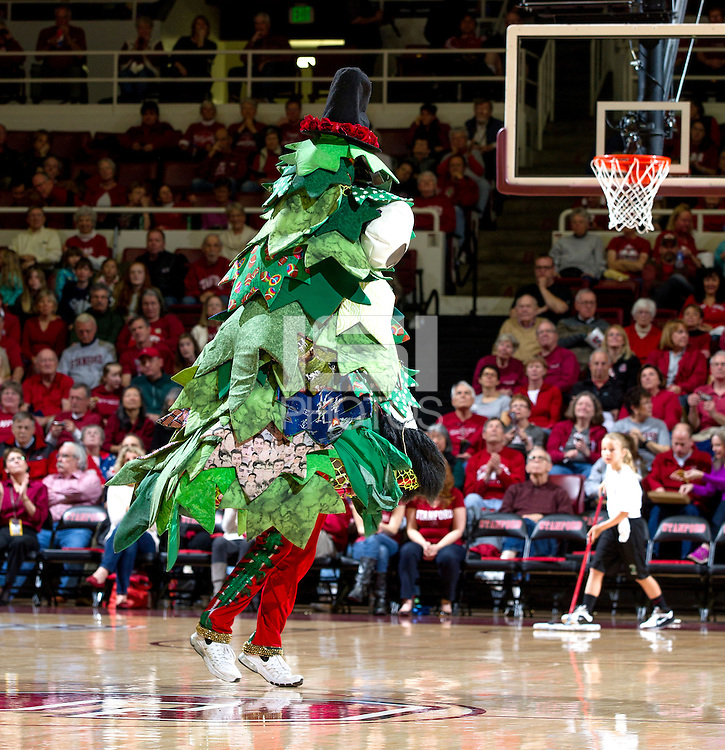 The Stanford Tree performance during Saturday's, March 1, 2014, Stanford women's basketball  vs Washington State game at Maples Pavilion, at Stanford, California.