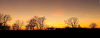 Panoramic image of late Autumn susnset over an oak savannah at Louisville Swamp in the Minnesota Valley National Wildlife Refuge. The Minnesota Valley National Wildlife Refuge is located within the urban and suburban areas of Minneapolis and St. Paul. It is a green belt of large marsh areas totaling approximately 14,000 acres, spanning 99 miles of the Minnesota River. This is one of only four American national wildlife refuges in an urban area, and the largest.