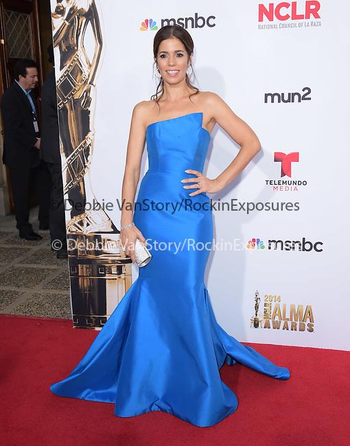 Ana Ortiz attends The 2014 NCLR Alma Awards held at The Pasadena Civic Center in Pasadena, California on October 10,2014                                                                               © 2014 Hollywood Press Agency