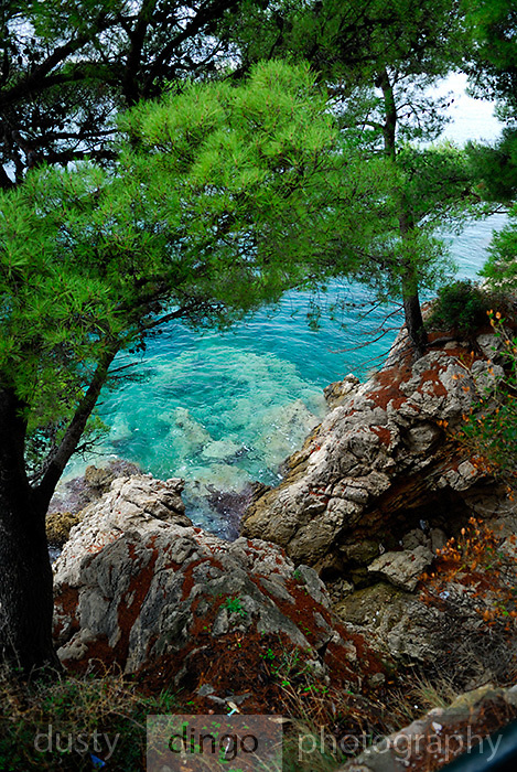 Rocky coastline, Lapad Bay, Dubrovnik, Croatia