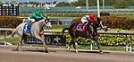 HALLANDALE BEACH, FL - JANUARY 27: Tommy Macho #8, with Luis Saez riding, wins the Fred W. Hooper Stakes on Pegasus World Cup Invitational Day at Gulfstream Park Race Track on January 27, 2018 in Hallandale Beach, Florida. (Photo by Liz Lamont/Eclipse Sportswire/Getty Images)