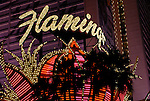Flamingo in Las Vegas