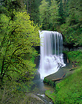 Silver Falls State Park, OR<br /> Middle North Falls (106 ft) in Silver Creek Canyon, early spring