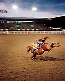 USA, Wyoming, Saddle Bronc Rider at the Cody Rodeo