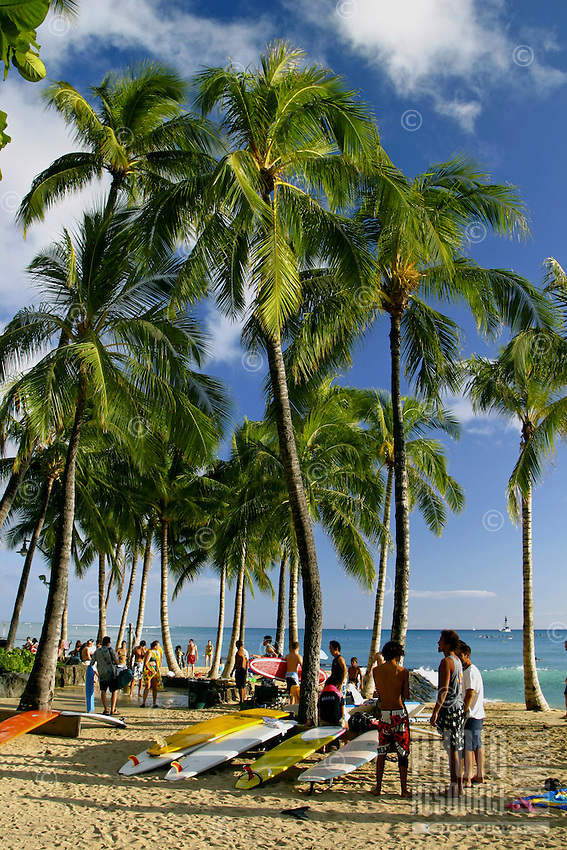 Surfers and their surfboards rest beneath the swaying palm trees of  Waikik Beach, Oahu