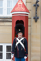 Royal Guard, Den Kongelige Livgarde, in uniform at sentry box, Royal Amalienborg Palace, Copenhagen, Denmark