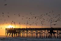 Sunrise over the Main Street Pier, Daytona Beach, FL, February 2018. (Photo by Brian Cleary/www.bcpix.com)