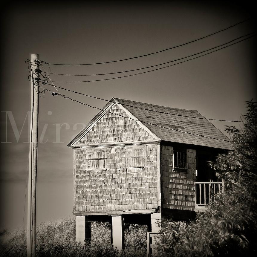 Coastal dune shack, Cape Cod, Massachusetts, USA
