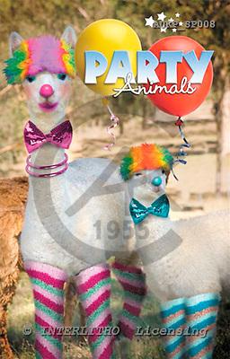 Samantha, ANIMALS,  photos,+sheep,++++,AUKPSP008,#A# Humor, lustig, divertido