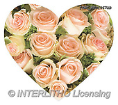 Marcello, WEDDING, HOCHZEIT, BODA, paintings+++++,ITMCWED1067AB,#W#, EVERYDAY