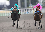 13 June 2010: Zenyatta and Mike Smith defeat St. Trinians and Martin Garcia to win the Vanity Handicap(GI) at Hollywood Park, Inglewood, CA