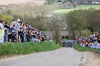 Peloton up the Gulpenerberg.<br /> <br /> 53th Amstel Gold Race (1.UWT)<br /> 1 Day Race: Maastricht &gt; Berg en Terblijt (263km)