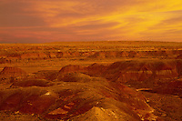 The Painted Desert<br />